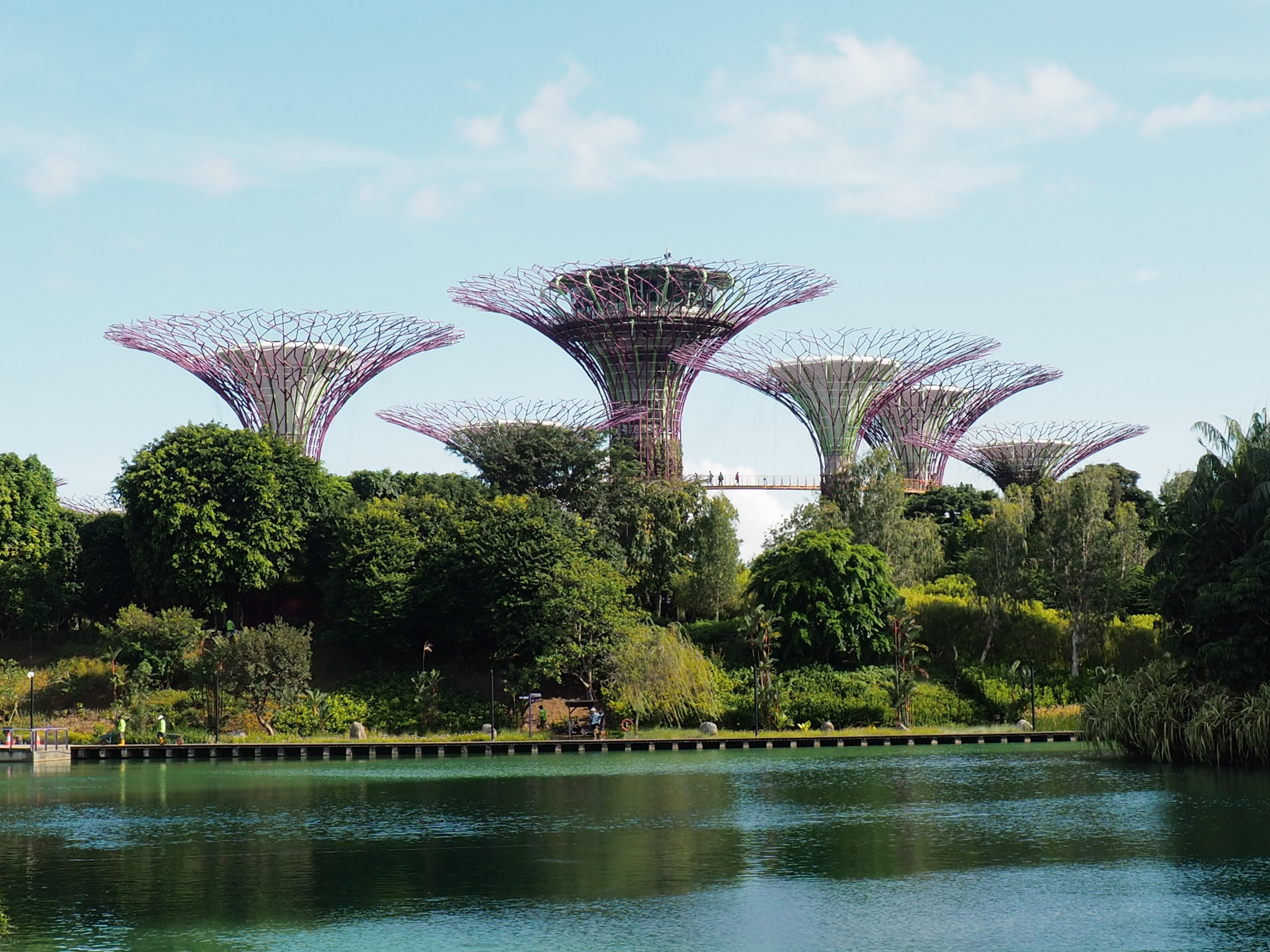 Visiter Singapour: Gardens of Bay